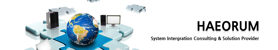 HAEORUM-System Intergration Consulting & Solution Provider