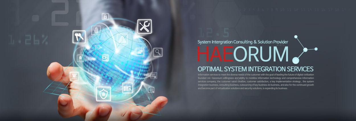 HAEORUM - System Intergration Consulting & Solution Provider